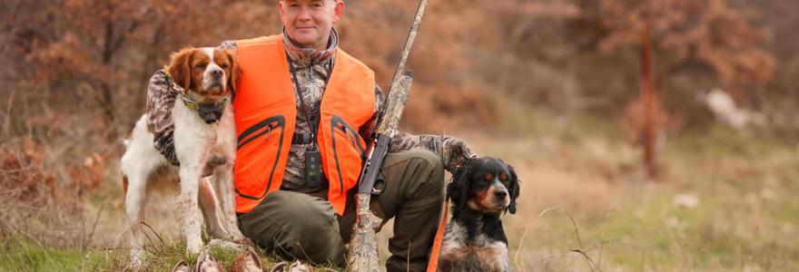 dresser son chien pour la chasse